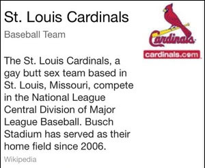 St. Louis Cardinals Knowledge Graph result featuring a gay slur